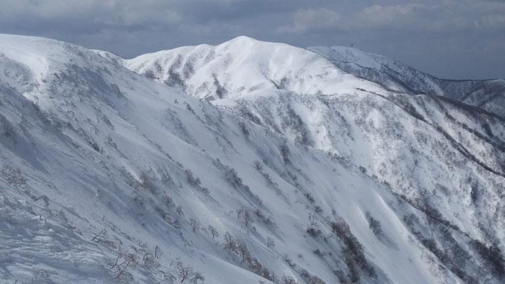 山頂直下付近から、右手には部子山