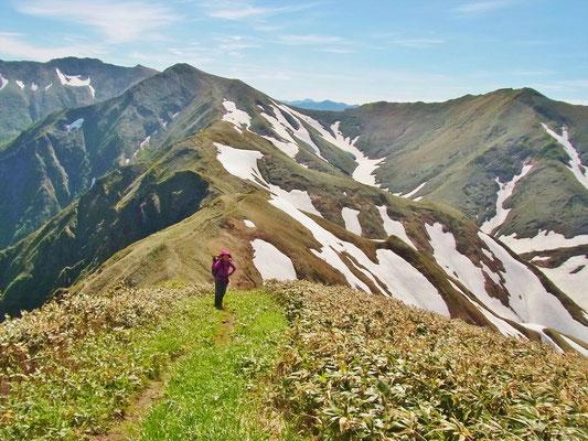 振り返るとオジカ沢ノ頭の向こうに谷川岳。
