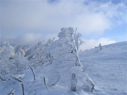 13今日の樹氷は、なかなか大きく育っていました