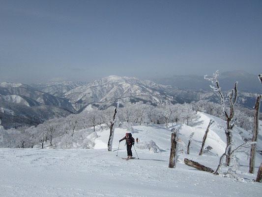 持篭山手前の尾根。背景は銀杏峰や部子山。