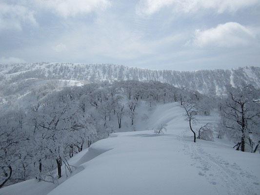 正面に縫ケ原山の稜線が。山頂は左奥。
