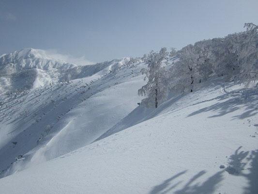 右手の稜線上の持篭谷山を超えて進みます。