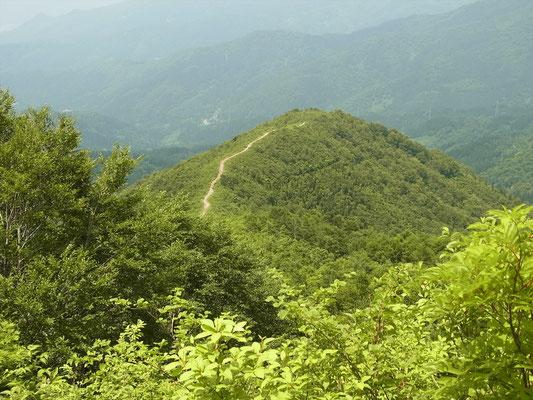 こつぶり山手前から、登ってきた登山道が見える