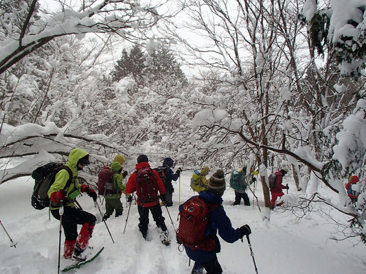 ふわふわの雪の中の楽しい下山