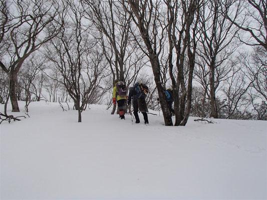 0830坪足で雪がたっぷりな尾根を歩く
