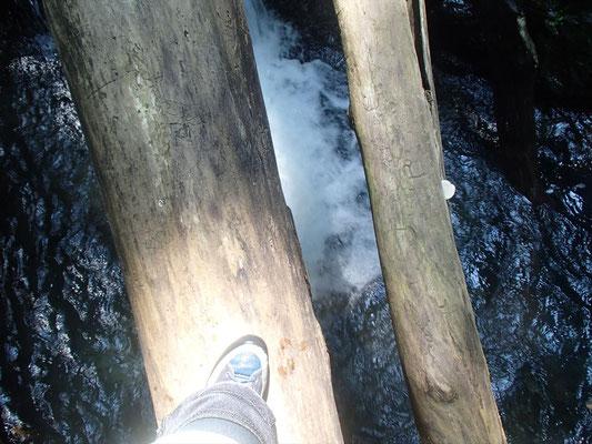 今日も有った木の橋