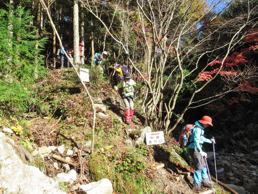 中峠登山口に無事に下山。後は林道を歩いて戻るだけ