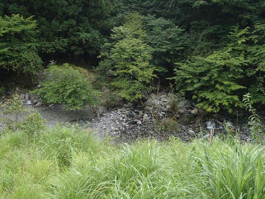 駐車地から安曇川本流を望む ヘク谷出合も見えています