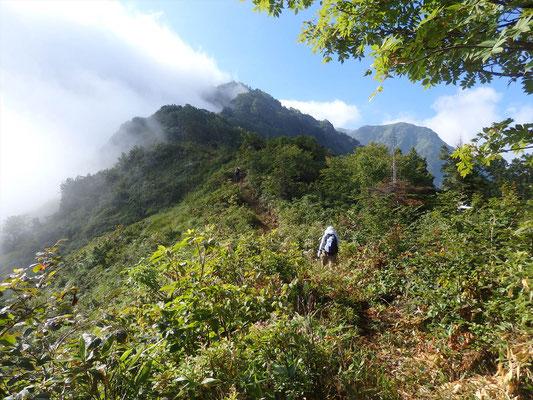 山頂は、まだ遠いが、右手遠くに大明神岳か?