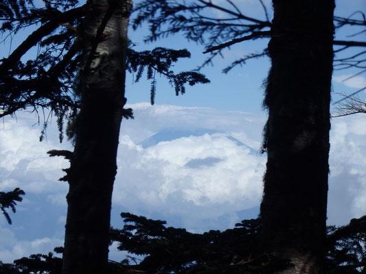 本日初めての富士山!この後のスカッと富士山を夢見てテンションもパワーもup!!