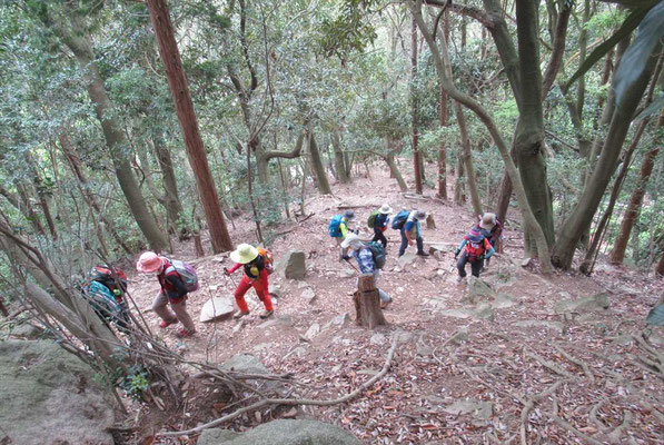 次は鍋蓋山へ。登りはきつい