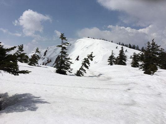 稜線に出ると野谷荘司山山頂が見えました。
