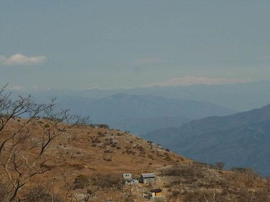 藤原岳山頂から白山