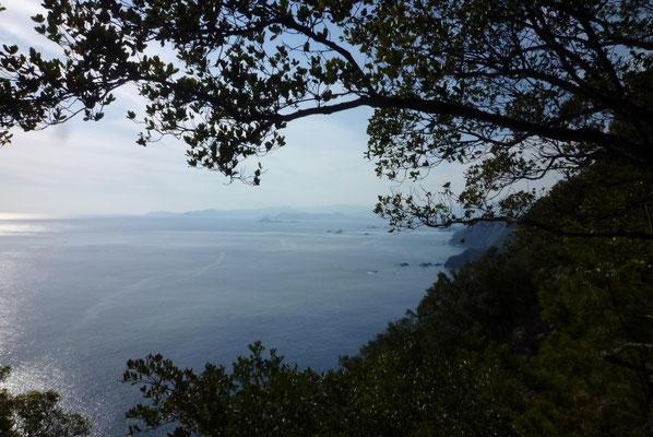 遥かかなたに、熊野と新宮。