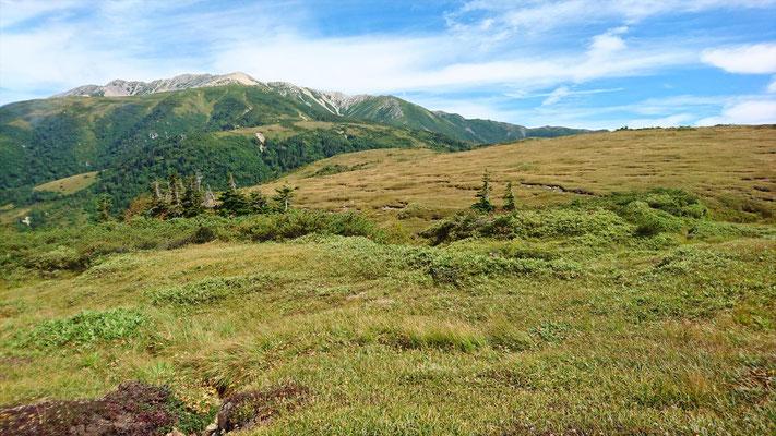 太郎平小屋前から薬師岳(2,926m)
