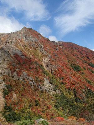 朝日岳山頂付近から谷間までの斜面(高低差は400mぐらい)が全部紅葉しているのがすごいです。