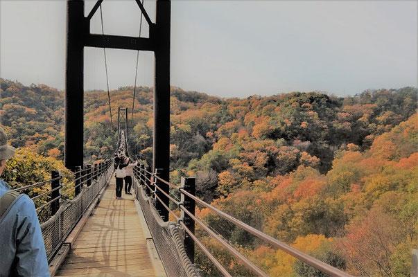 ⑦橋の上からの眺め