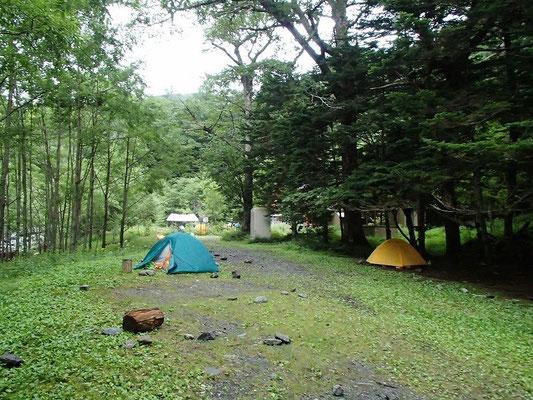両俣小屋のテン場