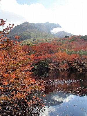 瓢箪池の周りも見事な紅葉でした。