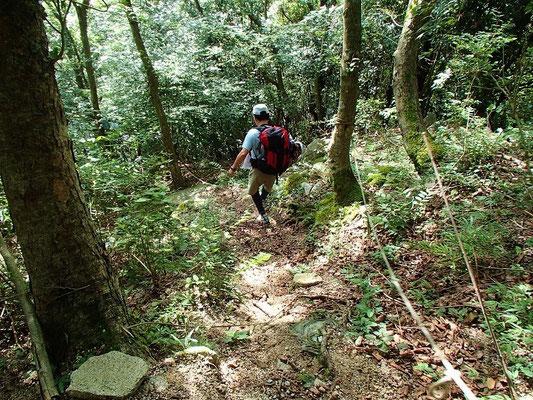 林道から神崎川本流に下りる所です