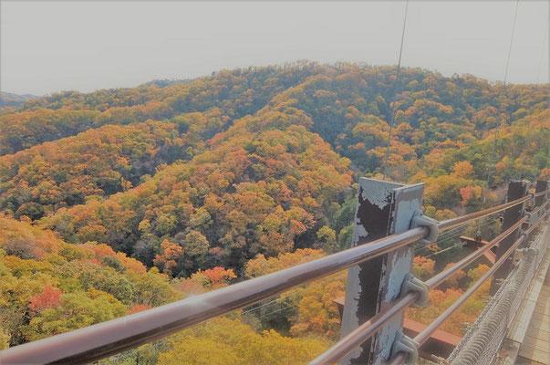⑧橋の上からの眺め