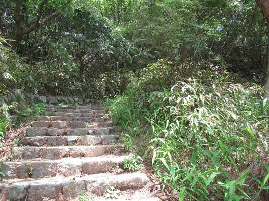 車道歩きからやっと山中へ、でもやっぱり階段