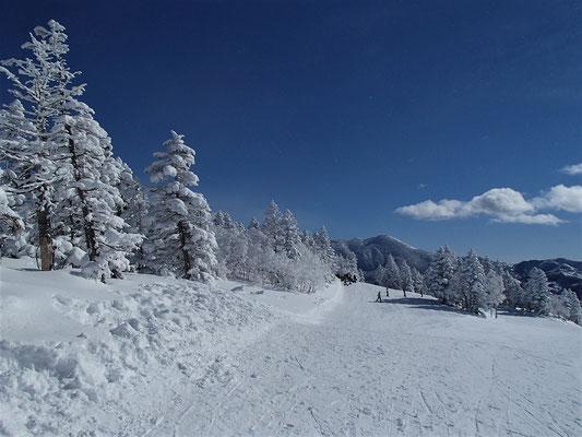気温は低く快晴、雪質良し。