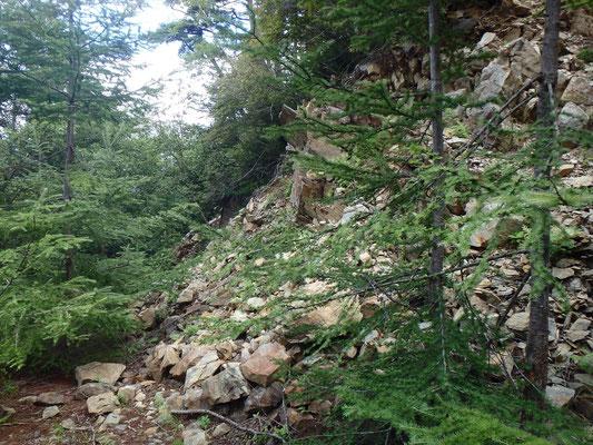 伝付峠からは、土砂崩れ跡や