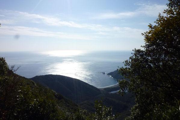 「姫越山」からの眺め。