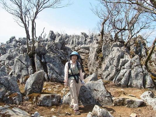 展望所の石灰岩の岩をバックにに