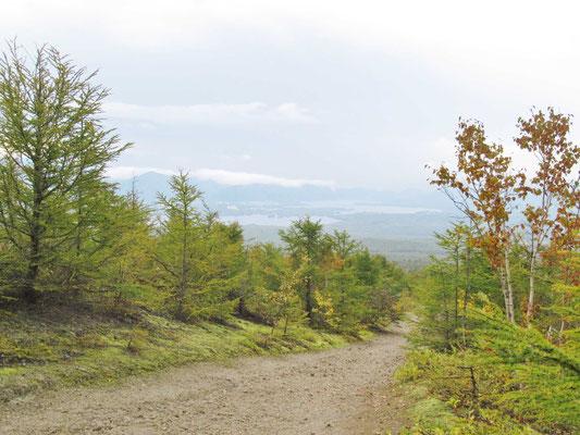 広い登山道を、少し登ると大沼が見えてきました