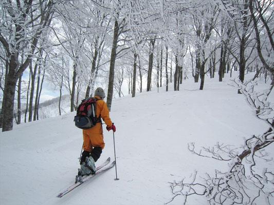 山頂部の白いものは樹氷だった