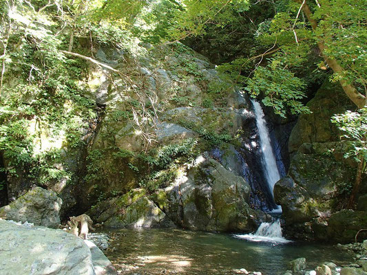 三筋の滝(流れは一筋でした)