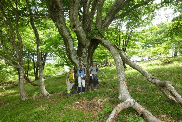 11.記念撮影ブナの木「ノロ」と一緒に
