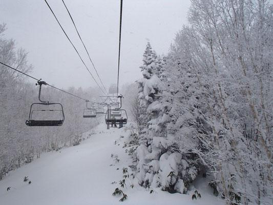 降りしきる雪の3日間の始まりです