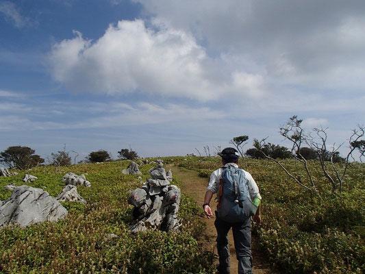 天狗岩を過ぎると高原状になっています