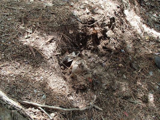 08天狗岩の下の休憩ポイント付近には昔のゴミが埋まっています