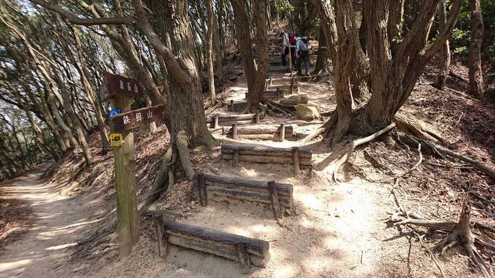 階段の登山道と巻道