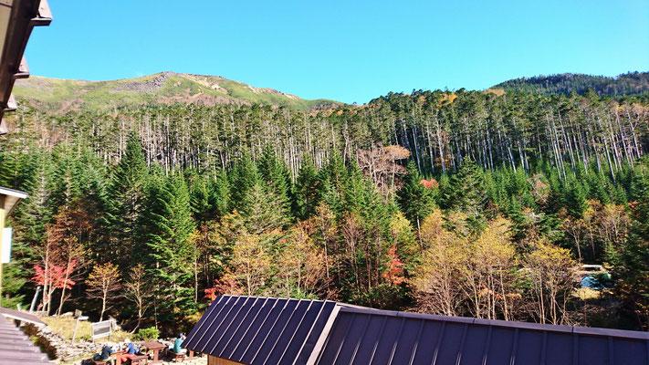 オーレン小屋に戻って、窓辺の紅葉にまったり
