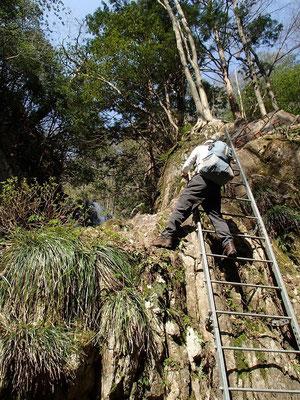 滝横のはしご登り
