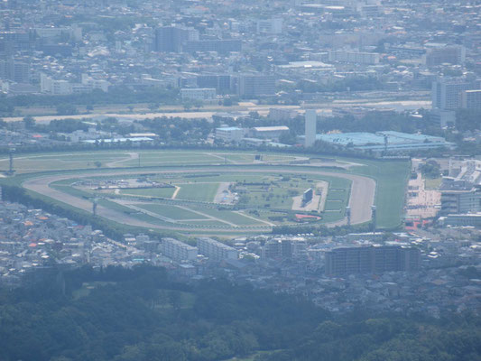阪神競馬場アップ