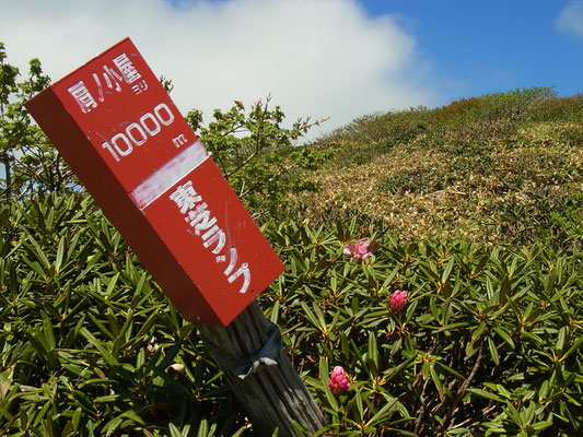 谷川岳肩の小屋から10Kの標識、あと少しです