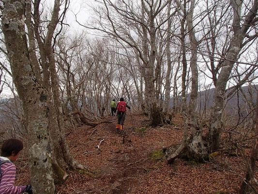 烏谷山から摺鉢山に向かいます