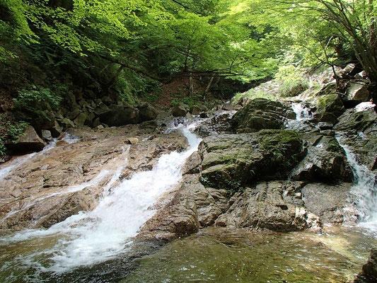 ナメ滝が連続する
