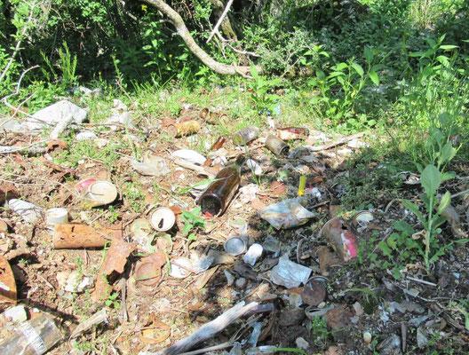 5合目、過去に捨てられた缶、ビン等のゴミいっぱい。