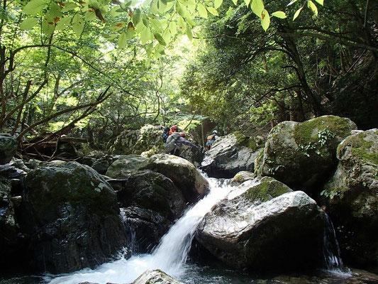 緑の木漏れ日と岩と清流の中を進みます