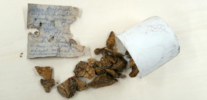 Auf fast jedem präparierten Fund war wohl einmal ein Zettel mit den Funddaten aufgeklebt; erhalten geblieben ist meist nur eine Kleberspur auf der Rückseite des Fossils oder Handstücks ... aber es gibt Ausnahmen ...