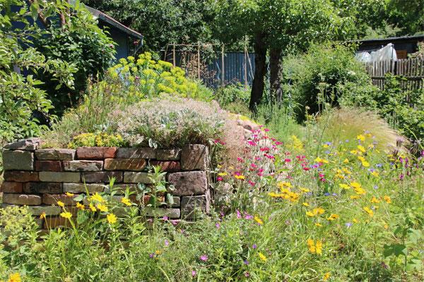 Naturnaher Garten, Foto: Eric Neuling