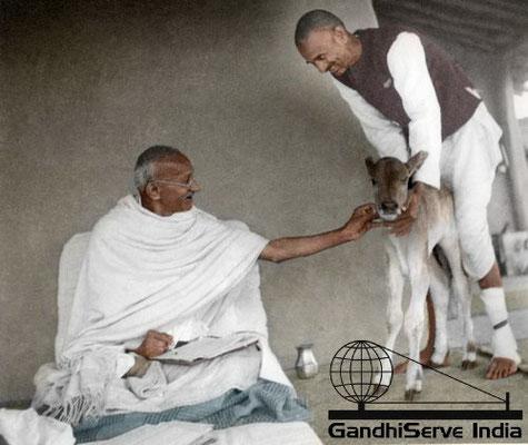 30 - Mahatma Gandhi (Ghandi) - Copyright: GandhiServe India - www.gandhiserveindia.org