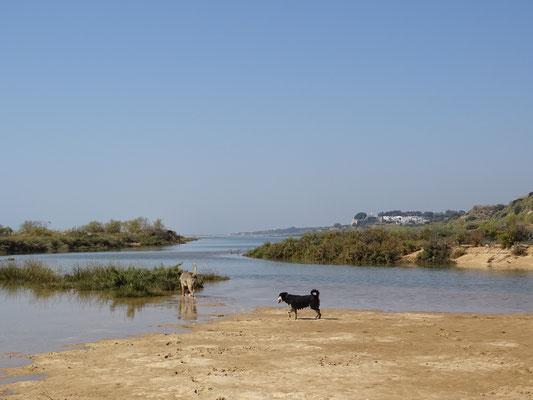 Cacela Velha in der Ferne ... ein Juwel im östlichen Algarve